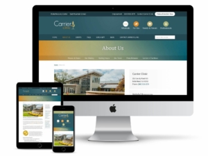 carrier clinic web design