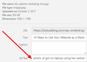 image showing how to set the alt text for an image in the WordPress media library UI