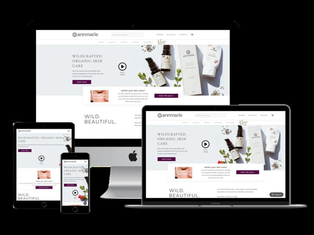 screeenshot of Anne Marie Gianni web design