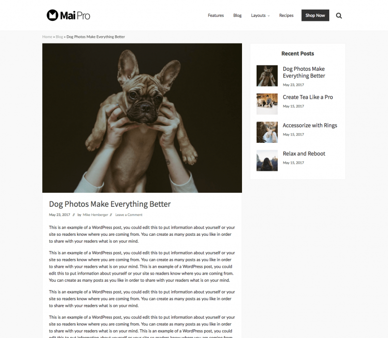 mai-content-sidebar-layout-800x698