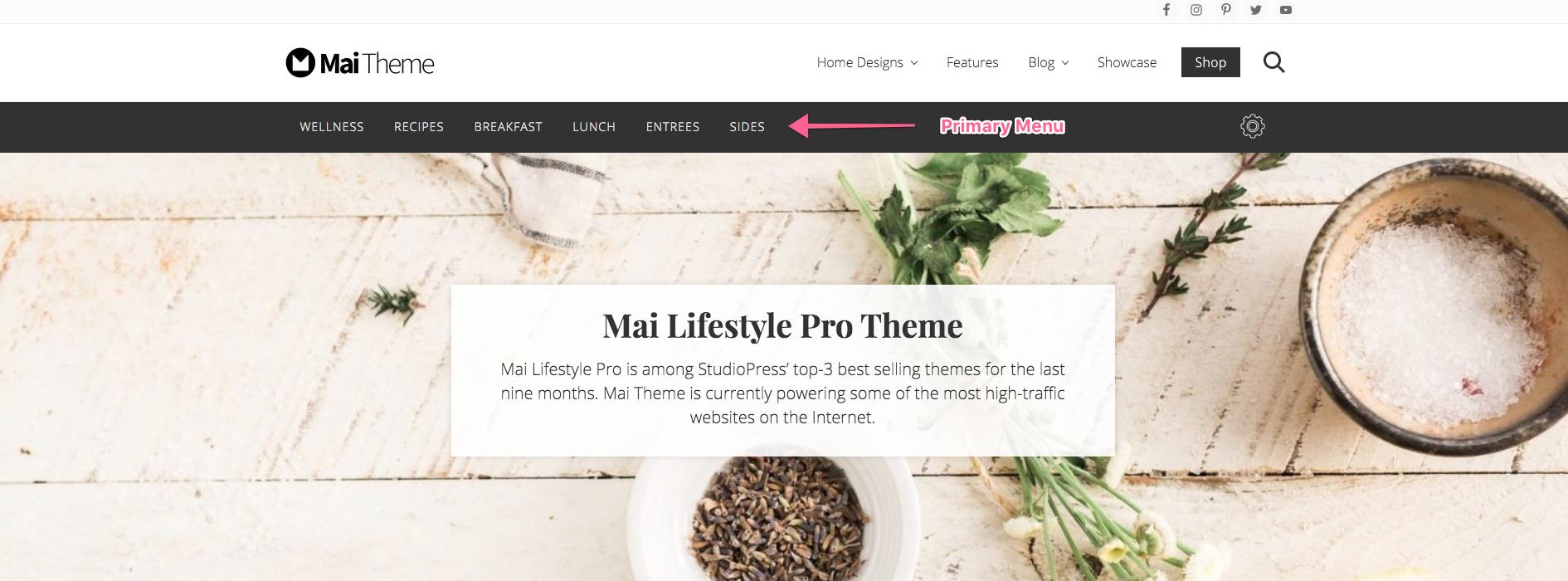 primary-menu screen image