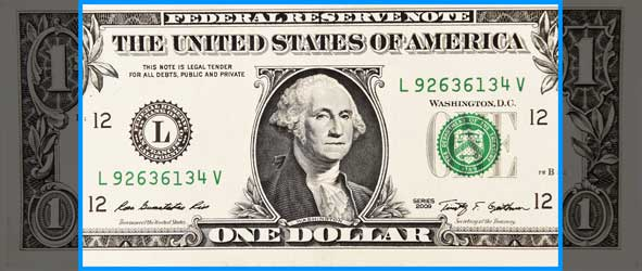 Image of dollar bill in section size