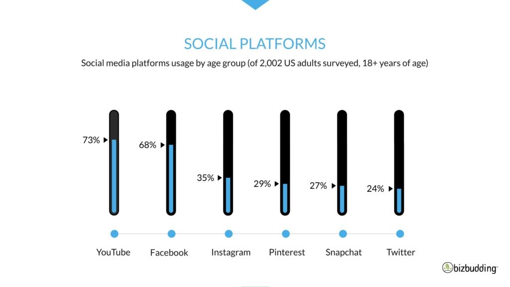Image of Social Media Platform statistics
