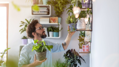 man tending plants in house