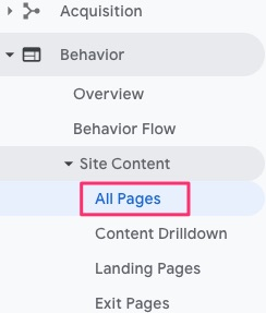screenshot showing Google Analytics All Pages view