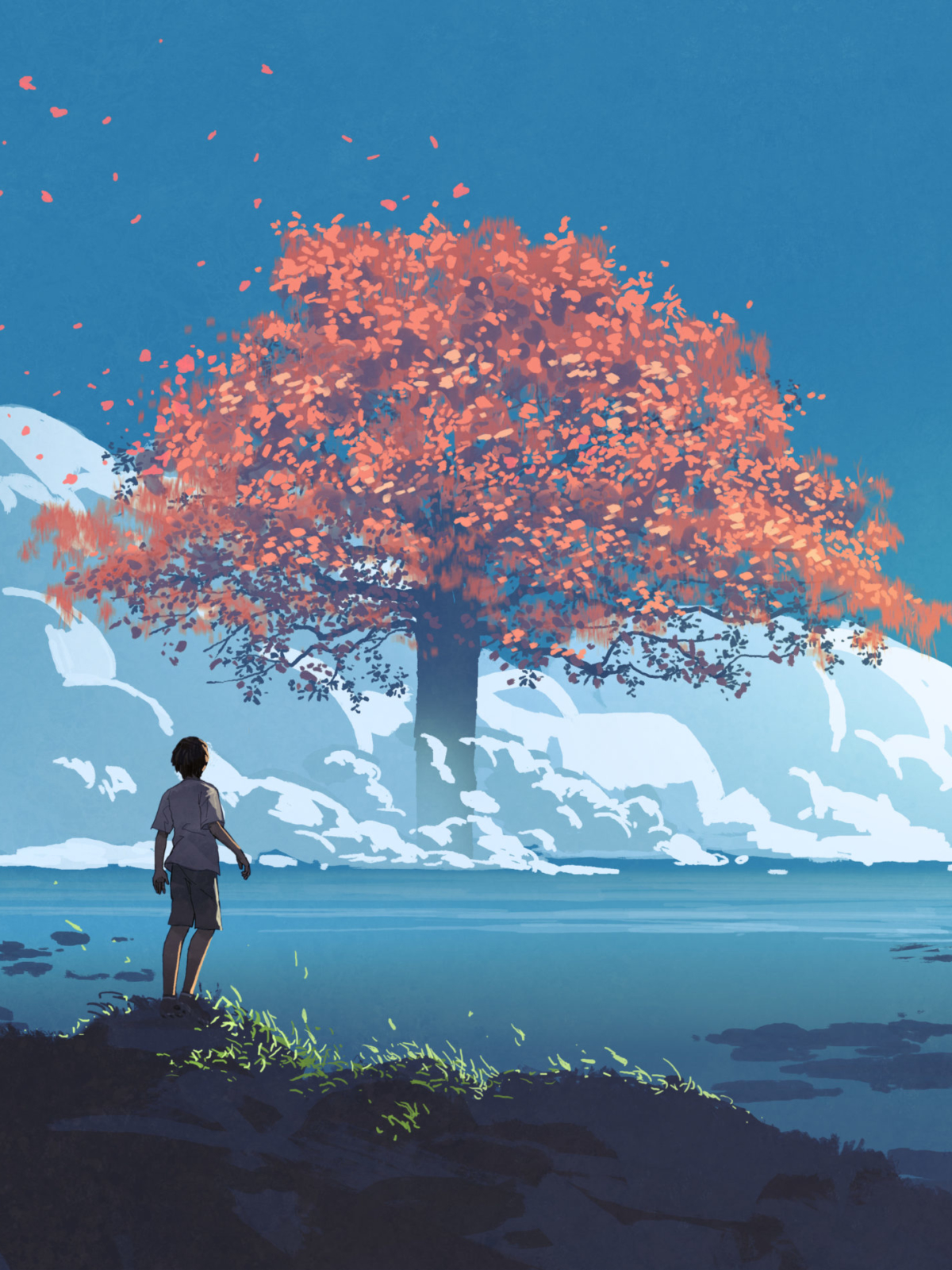 image of boy looking at red tree in distance