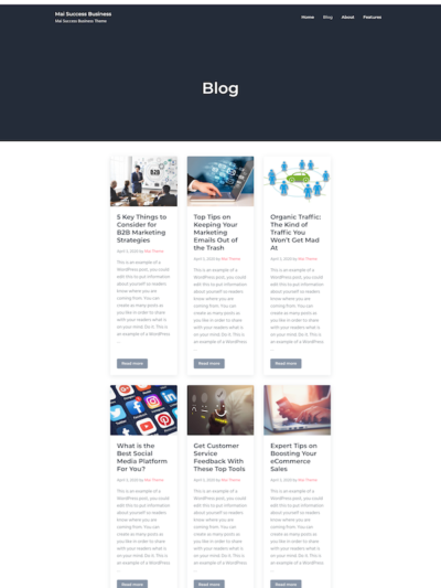 Demo image of a Mai Success Business blog post layout