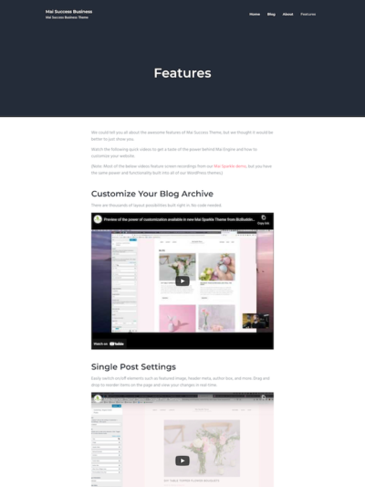 Demo image of a Mai Success Business features page